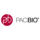 PacB1